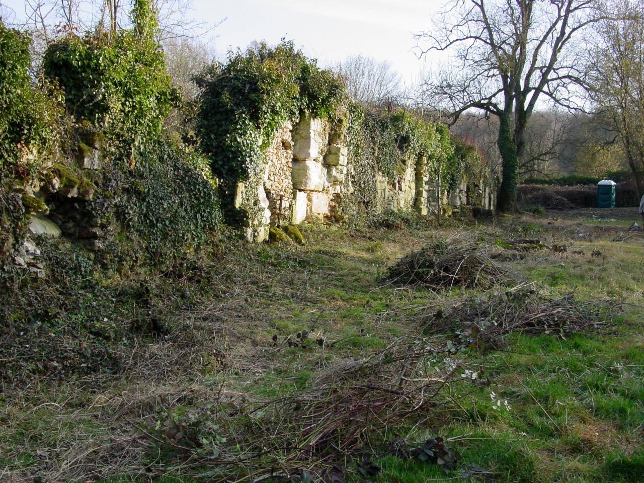 06-Défrichement des ruines du mur abbecourt
