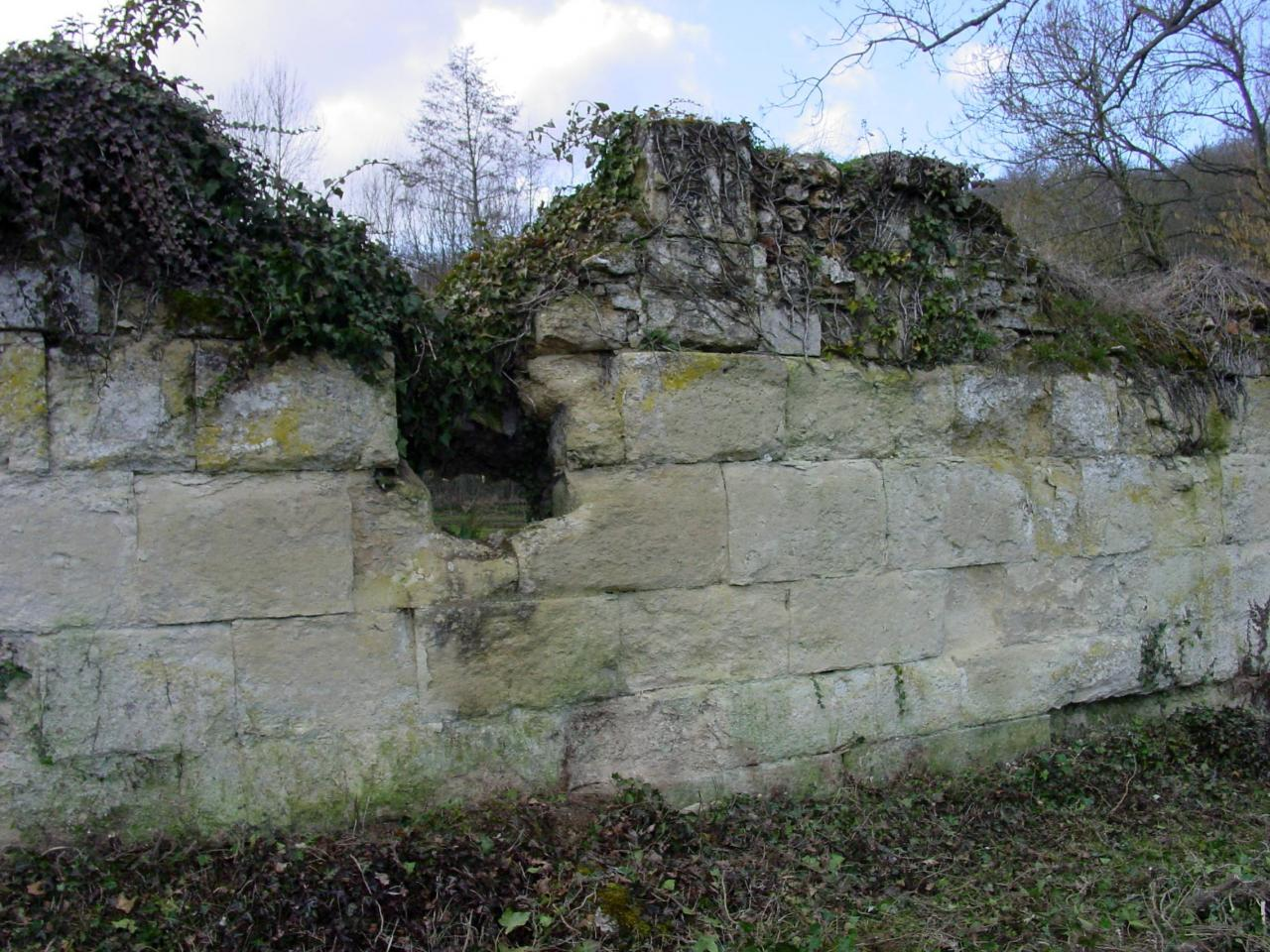 09-Défrichement du mur d'Abbecourt