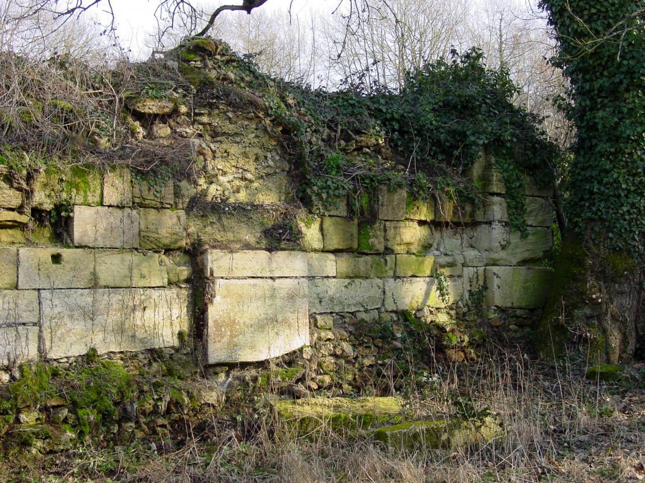 Ruines du mur d'Abbecourt
